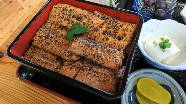 豊前市にある食堂、漁師食堂 うのしま豊築丸で「はも重」を食べた!