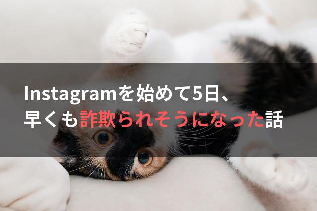 Instagramを始めて5日、早くも詐欺られそうになった話