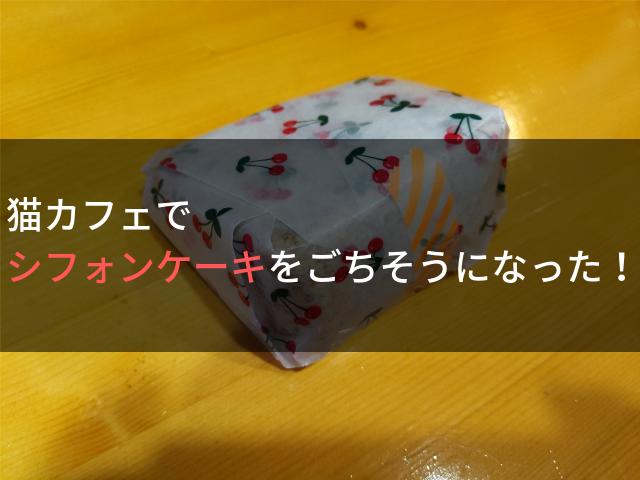 猫カフェでシフォンケーキをごちそうになった!
