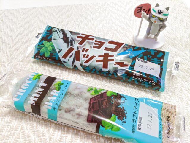 シャトレーゼのチョコミントアイス、二種類を食べ比べてみた!